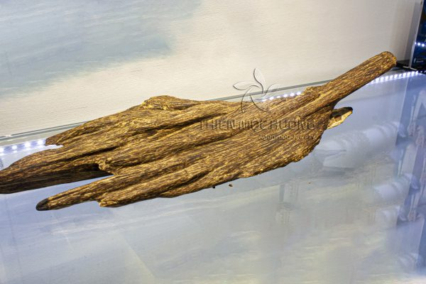Khối gỗ trầm hương