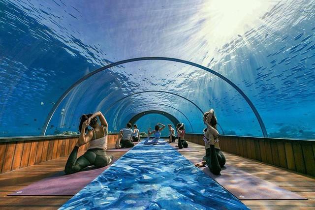 Yoga là gì dưới lòng đại dương tại Maldives