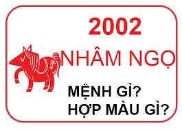 Sinh năm 2002 mệnh gì, 2002 tuổi gì? Tuổi Nhâm Ngọ hợp màu nào?