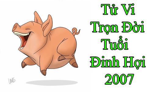 Đinh hợi 2007 và vận trình năm 2021