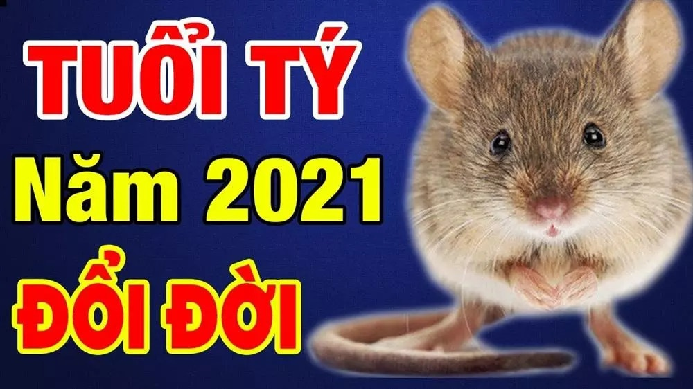 Tuổi tý trong năm 2021